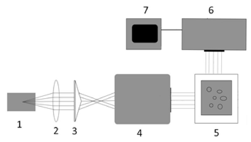 fig-3.jpg