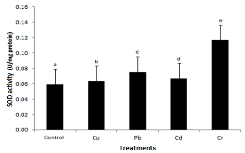 The growth and antioxidative responses of sonchus oleraceus fig 7g ccuart Images