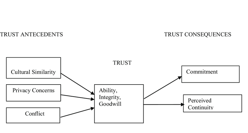 Antecedents and Consequences of Trust Development within a Network